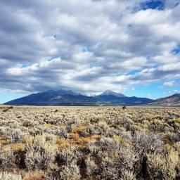 'Merica – Colorado